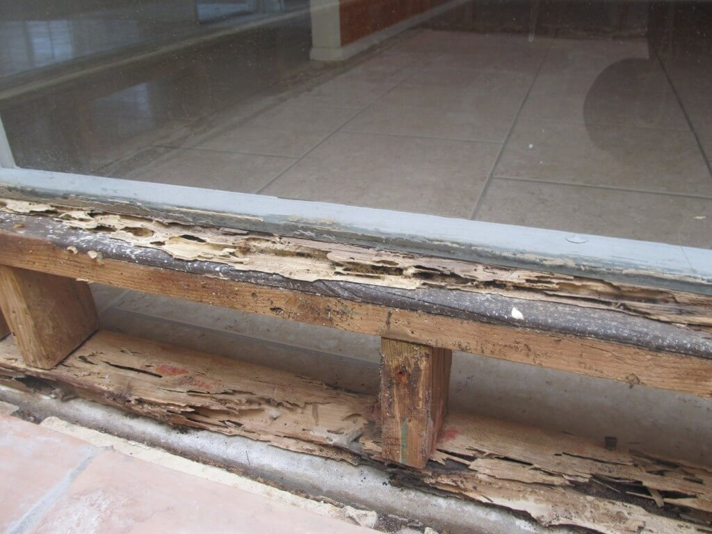 Drywood-termite-damage