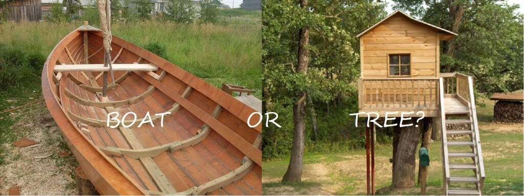 boat or tree