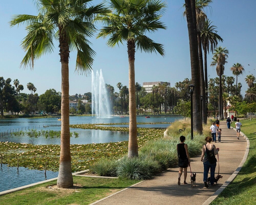 echo-park-lake-palm-trees