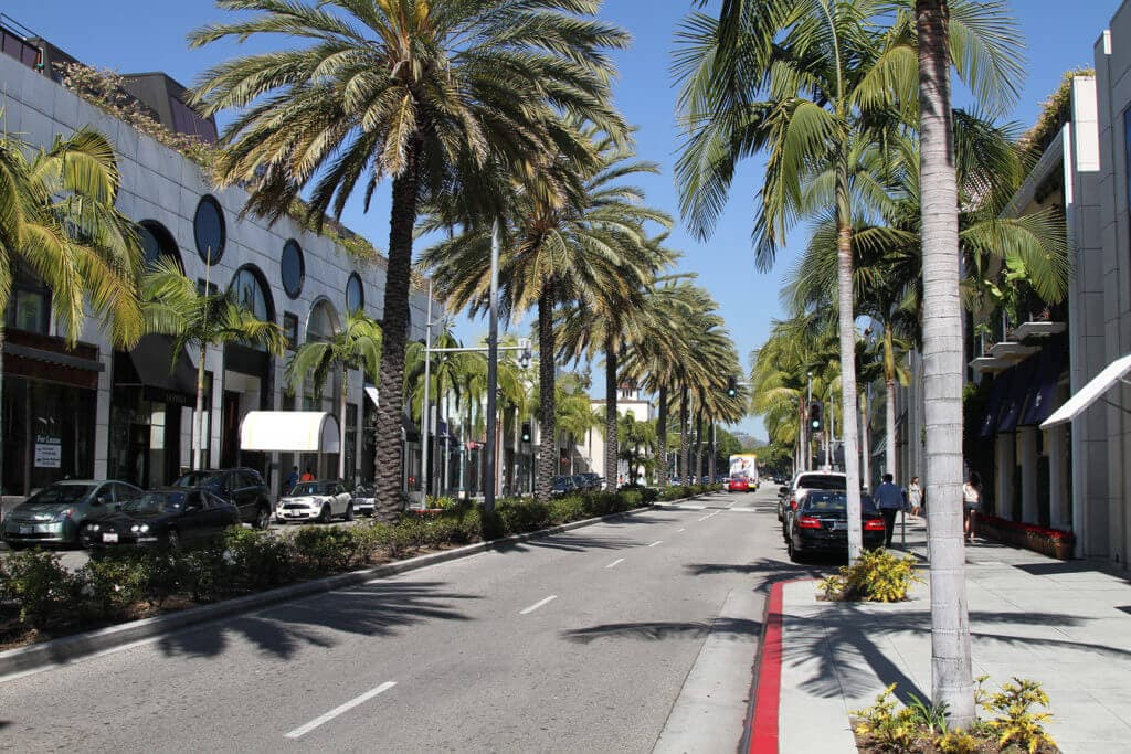 rodeo-drive-palm-trees
