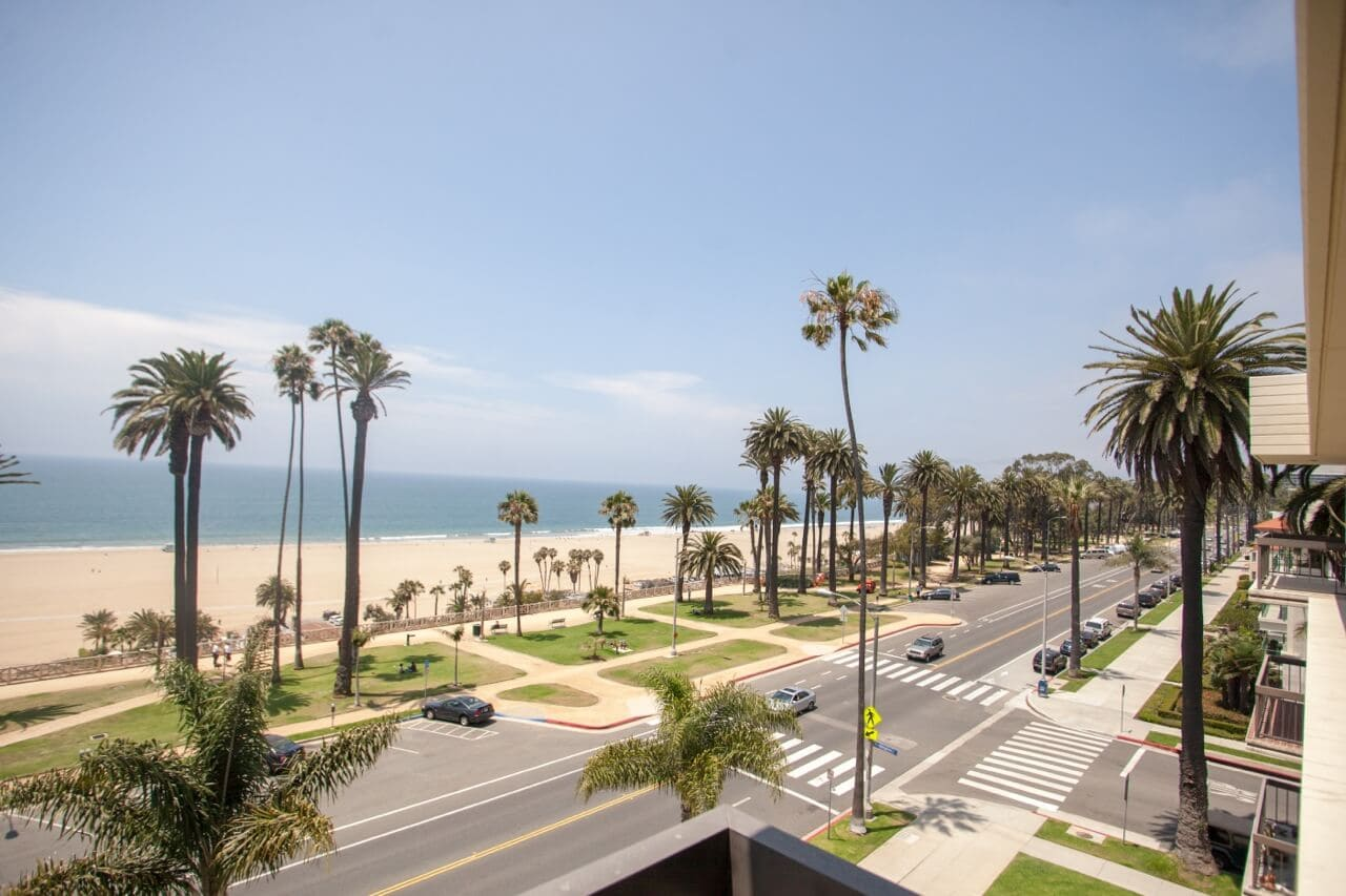 & Palm Trees in Southern California